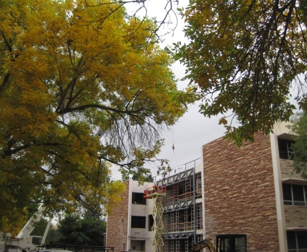 The leaves turn color, renovations on Eddy Hall continue